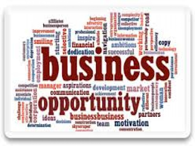 Business & Investment Opportunities