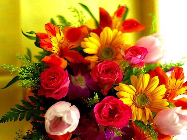 Buy Flowers & Gifts