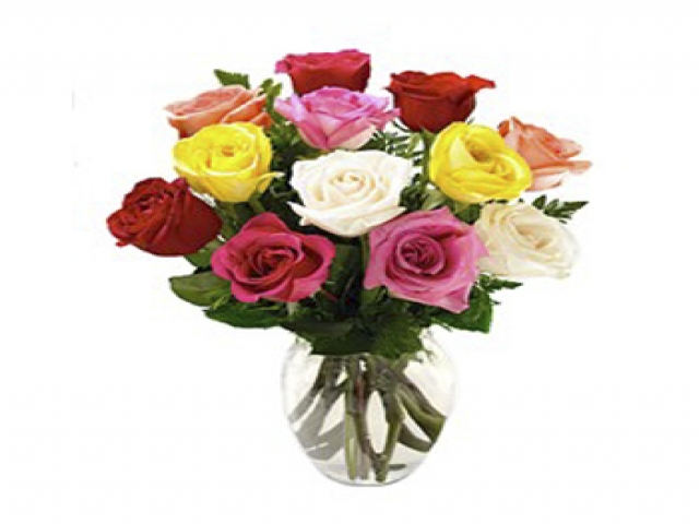 1 Dozen of Mix Colors Roses